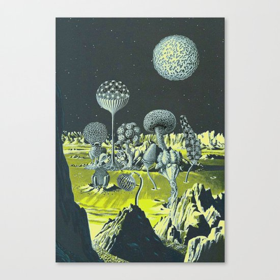 THERE IS NO VOID Canvas Print