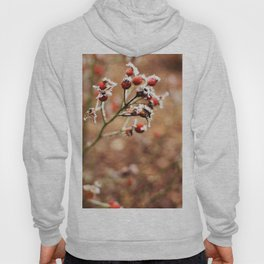 Rose Hip Frost Hoody