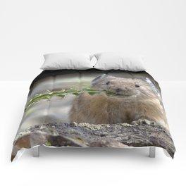 Watercolor Pika Thistle Comforters