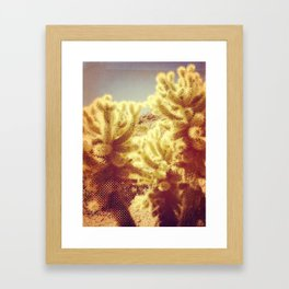 Cholla Framed Art Print