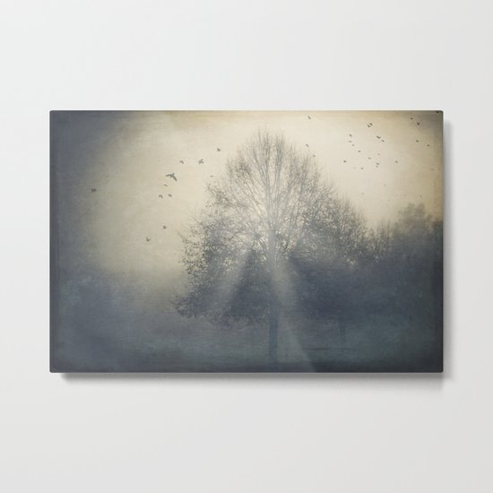 Foggy Novemberday Metal Print