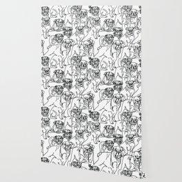 bulldogs, bulldogs and more bulldogs Wallpaper