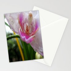 Orchid Mornings Stationery Cards