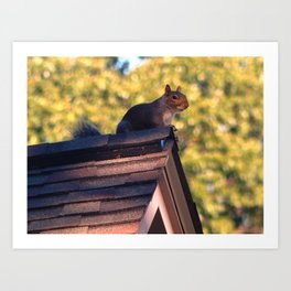 The lookout Art Print