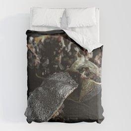 Silver Fruit 2 Comforters