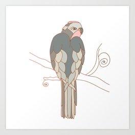 African gray parrot Art Print