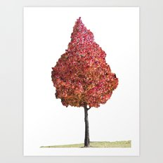 Little Red Tree Art Print