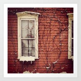 Snowy Window Art Print