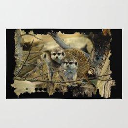 African Meerkat Trio Rug