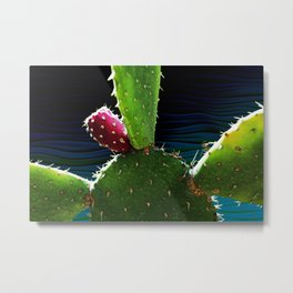 Cactus Needs A Hug Metal Print
