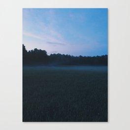 VAAN Canvas Print