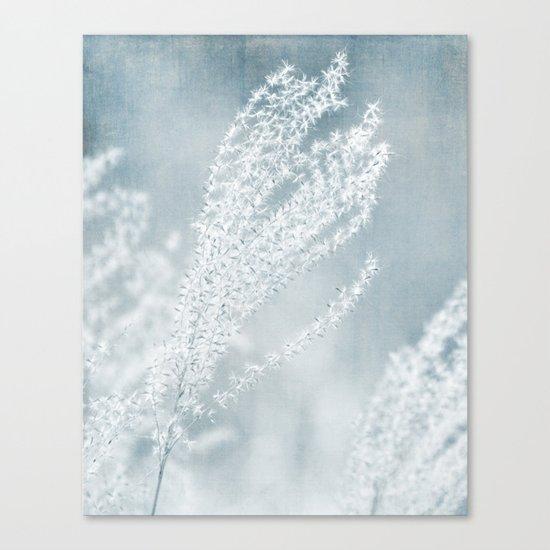 WINTER SEEDS Canvas Print