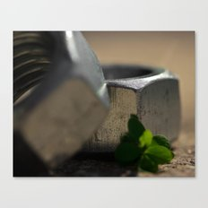 Leafy Nuts Canvas Print