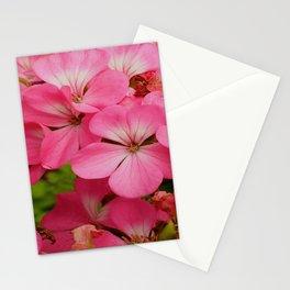 Pink Geranuims Stationery Cards