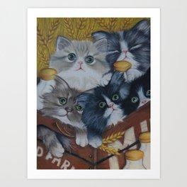 Crate full of kittens Art Print