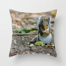 Gray squirrel stood upright eating a nut Throw Pillow