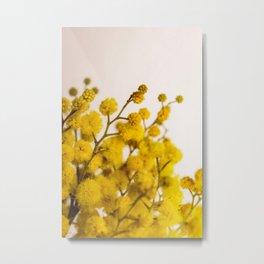 Flower Photography by Anastasiia Ostapovych Metal Print