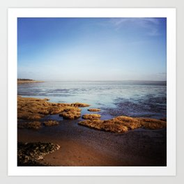 Low Tide Seascape Art Print