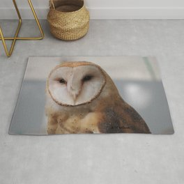 Barn Owl on Alert Rug