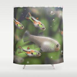 Endler Guppy Shower Curtain