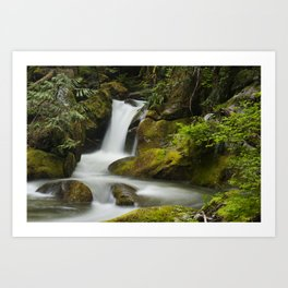 Deception Creek Art Print