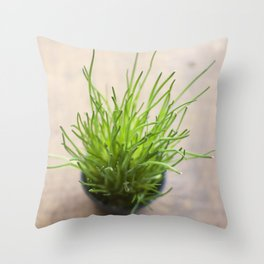 Fresh chives Throw Pillow