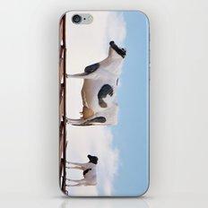 Catwalk Heifer iPhone & iPod Skin