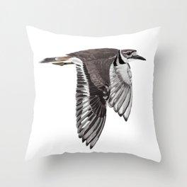 Vociferus peruvianus - Charadrius - Killdeer - Chorlo gritón Throw Pillow