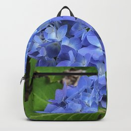 In the Blue Backpack