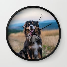 Australian Sheep Dog Wall Clock