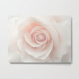 Blush Pink Rose Metal Print