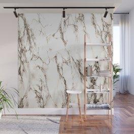 Brown Veined Marble Wall Mural