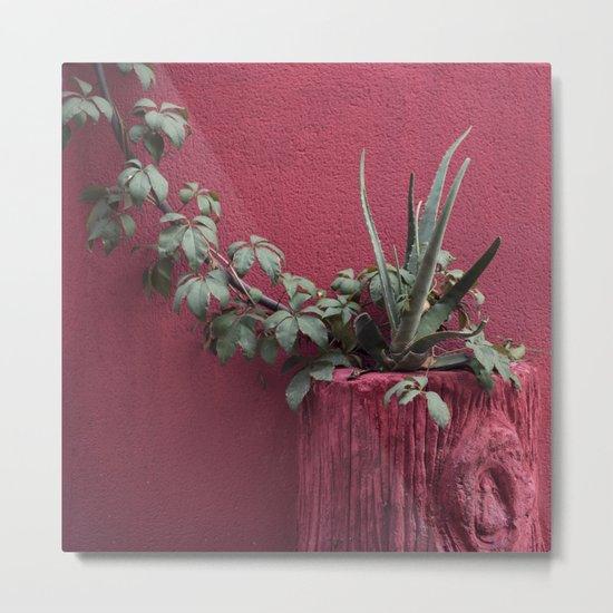 Pink and plant Metal Print