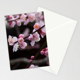 Japanese pink plum blossom Stationery Cards