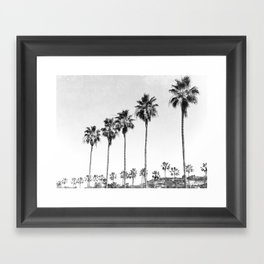 Black And White Palms  Framed Art Print