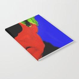 pop art Notebook