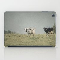 cows iPad Cases featuring Moo Cows by Pure Nature Photos