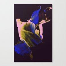 untitled¨ Canvas Print