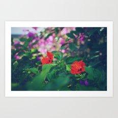 Kauai In Bloom Art Print