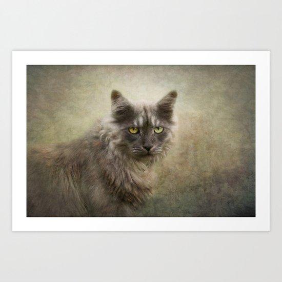 I am a cat  Art Print