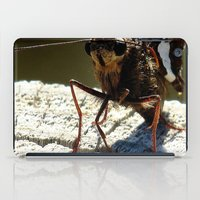 moth iPad Cases featuring moth by Laura Grove