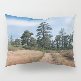 Zimmerman Park Pillow Sham