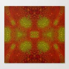 Bubbles Galore Canvas Print