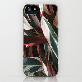 Shades in summer iPhone Case