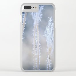 Cold Hoarfrost on the weeds in the winter Clear iPhone Case