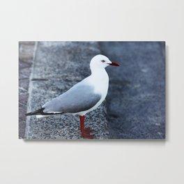 The Seagull Metal Print