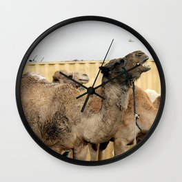 Israel Camels - Negev Desert Wall Clock