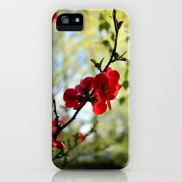 Bold Red Flower iPhone Case