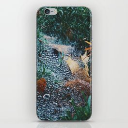 Dewdrops 3 iPhone Skin