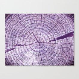 The Stump Violet Canvas Print